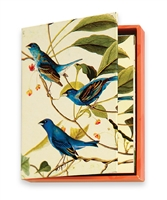 The MET Audubon Birds Boxed Notecards