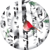 Bird in Birch Round Paper Dessert Plate