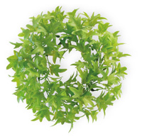 Ivy Wreath green