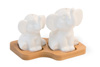 Elephants Salt & Pepper Set