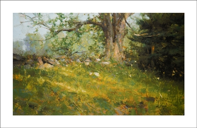 Diana's Maple Lithograph By Richard Schmid