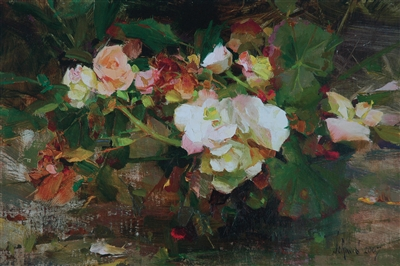 Begonias By Richard Schmid