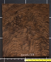 Walnut Claro USA Marble Curl wood veneer