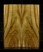 Camphor Wood Crotch wood veneer