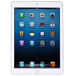 Apple Ipad Air 2 With Wi-fi 16gb - White & Silver (etching)