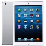 Apple Ipad Air 2 With Wi-fi + Cellular 16gb - White & Silver