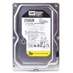 Western Digital Re3 Enterprise 250gb Sata/300 7200rpm 16mb Harddrive