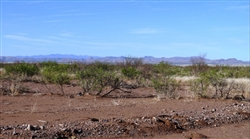 Arizona, Cochise County, .21 Acre Cochise College Estates. TERMS $100/Month
