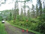 Hawaii, Hawaii County, 1/4 Acre Nanawale Estates, Plumeria Road. TERMS $155/Month