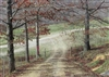 Kentucky, Laurel County, 8.92 Acre Serenity Creek, Lot 7, Pond. TERMS $430/Month