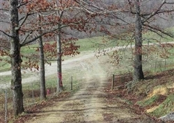 Kentucky, Laurel County, 7.12 Acre Serenity Creek, Lot 12. TERMS $425/Month