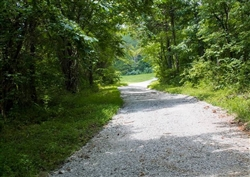 Kentucky, Wayne County, 2.58 Acre Bluewater Ridge, Lot 16, Waterfront. TERMS $385/Month