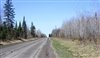 Michigan, Baraga County, 40 Acre Abby Point. TERMS $600/Month