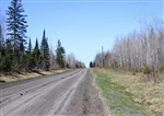 Michigan, Baraga County, 5 Acre Abby Point, Electricty. TERMS $130/Month