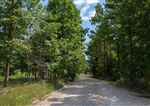 Missouri, Shannon County, 5.80 Acre Borgmann's Hollow Phase I, Lot 5. TERMS $185/Month