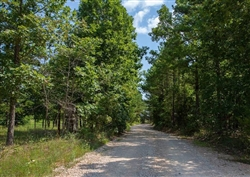 Missouri, Shannon County, 5.80 Acre Borgmann's Hollow Phase I, Lot 5. TERMS $204/Month