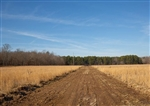 Missouri, Shannon County, 8.07 Acre O'Connor Crossing, Lot 5, Creek. TERMS $359/Month