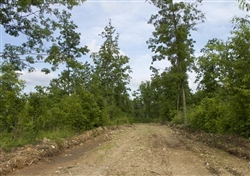 Missouri, Shannon County, 10.94 Acre Thunder Mountain Ranch, Lot 41. TERMS $310/Month