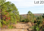 Oklahoma, Latimer  County, 19.14 Acre Stone Creek Ranch, Lot 20, Creek. TERMS $320/Month