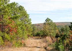Oklahoma, Latimer  County, 87.01 Acre Stone Creek Ranch, Lot 64, Creek. TERMS $1,170/Month