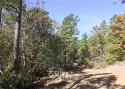 Oklahoma, Latimer  County, 18.44 Acre Stone Creek Phase I, Lot 102, Creek. TERMS $500/Month