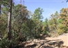 Oklahoma, Latimer  County,  5.53 Acre Stone Creek Phase I, Lot 182. TERMS $550/Month