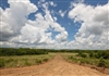 Oklahoma, Pittsburg County, 4.04 Acre Paradise Valley, Lot 21, Electricity. TERMS $460/Month