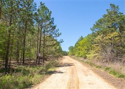 Eagles Nest Subdivision, Near Clayton, OK, Near Sardis Lake, In Pushmataha County, OK, Road into Subdivision