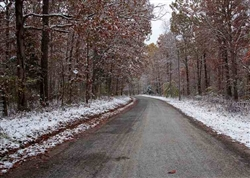 Tennessee, Decatur County, 11.50 Acre Sweet Water Ranch, Lot 25. TERMS $555/Month