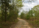 Tennessee, Henderson County, 5.19 Acres  Twin Rivers, Lot 7. TERMS $274/Month
