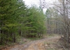 Tennessee, Sequatchie County, 7.16 Acre Hidden Hills, Lot 20. TERMS $225/Month