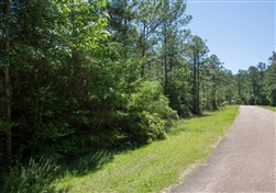 Texas, Jasper County, 0.54 Acre, Rayburn Country, Lot 270, Electricity. TERMS $125/Month