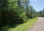 Texas, Jasper County, 0.55 Acre, Rayburn Country, Lot 288, Electricity. TERMS $125/Month
