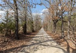 Texas, Red River County, 5.97 Acre Wishing Star Ranch, Lot 72 Electricity. TERMS $725/Month