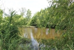 Texas, Red River County, 7.34 Acre McCoy Creek. TERMS $400/Month