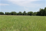 Texas, Red River County, 8.96 Acre McCoy Creek. TERMS $405/Month