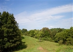 West Virginia, Roane County, 3.95 Acre Heritage Hollow, Electricity. TERMS $260/Month