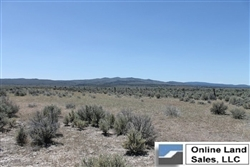 California, Lassen County,  40 Acres Ravendale Ranch. TERMS $260/Month