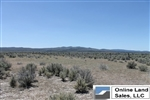 California, Lassen County,  49 Acres Ravendale Ranch. TERMS $429/Month
