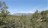 35% OFF: Colorado, Costilla County, 5.02 Acres Sangre De Cristo Ranches, Lot 1058. TERMS $120/Month