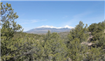 Colorado, Costilla County, 5.02 Acres Sangre De Cristo Ranches, Lot 1058. TERMS $185/Month