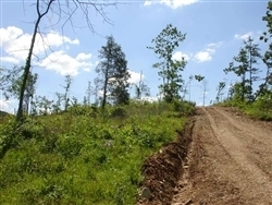 Missouri, Shannon County, 29.56 Acres Antler Ridge, Lot 28. TERMS $390/Month