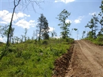 Missouri, Shannon County, 16.54 Acres Antler Ridge. TERMS $280/Month