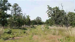 Oklahoma, Pittsburg County, 14.78 Acres Indian Ridge II, Lot 53. TERMS $355/Month