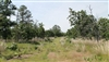 Oklahoma, Pittsburg County, 15.84 Acres Indian Ridge II. TERMS $355/Month