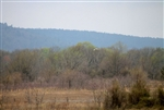 Oklahoma, Pittsburg County, 10.01 Acre Daisy Meadows. TERMS $400/Month