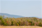 Oklahoma, Pittsburg County, 5.9 Acre Daisy Meadows. TERMS $370/Month