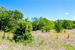Oklahoma, Okfuskee County, 9.4 Acre Saddlebrook Ranch. TERMS $230/Month