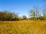 Oklahoma, Okfuskee County, 12.3  Acre Saddlebrook Ranch, Creek, Electricity. TERMS $430/Month