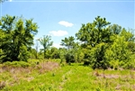 Oklahoma, Okfuskee County, 6.2 Acre Saddlebrook Ranch. TERMS $200/Month
